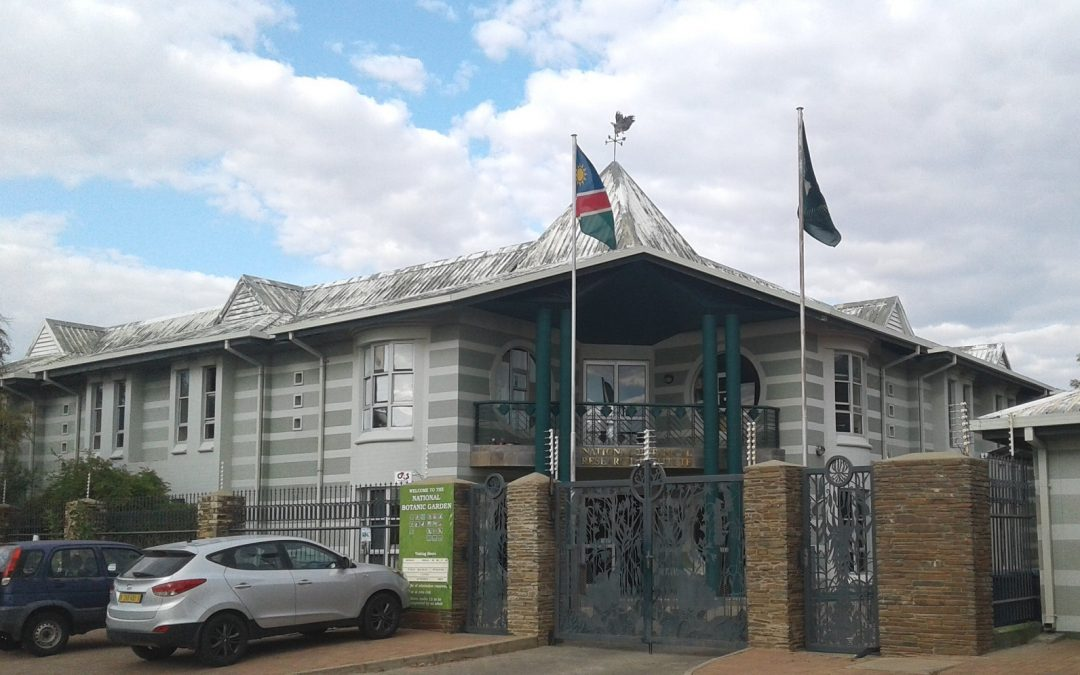 L'oasis de Windhoek : le jardin botanique de Namibie