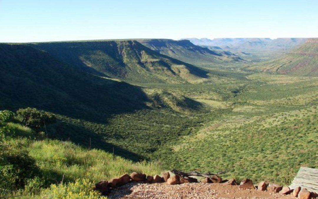 5 choses que vous ne saviez pas sur le Damaraland en Namibie