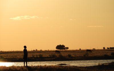 Une rencontre sans précédent – Etosha et Ovamboland en Namibie