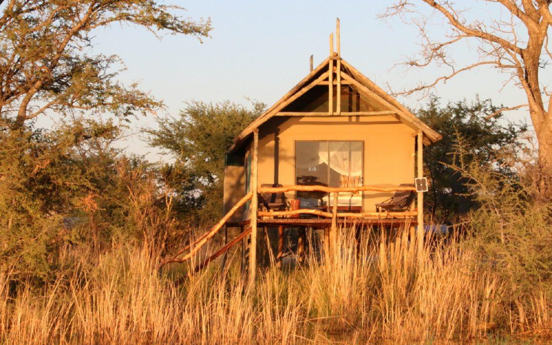 Pourquoi le Chobe River Camp est-il l'ultime retraite en Namibie ?