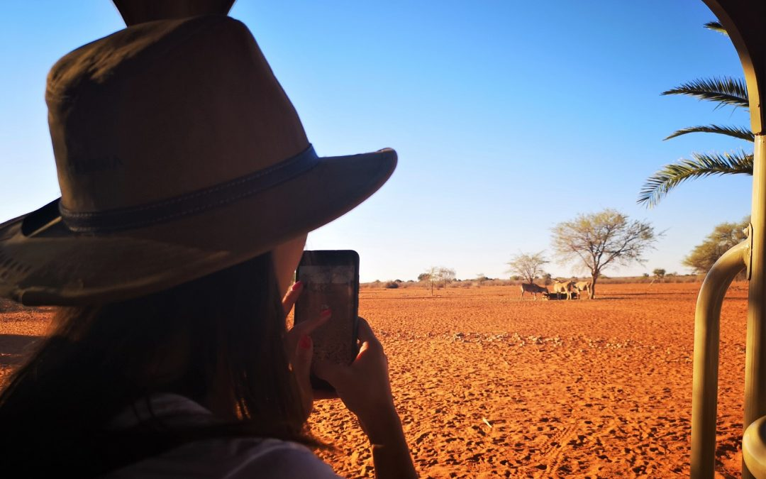 Les architectes d'intérieur s'inspirent du Kalahari en Namibie
