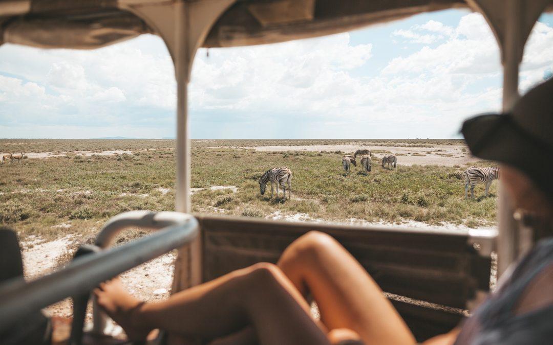 Safari en autotour en Namibia – Acacia