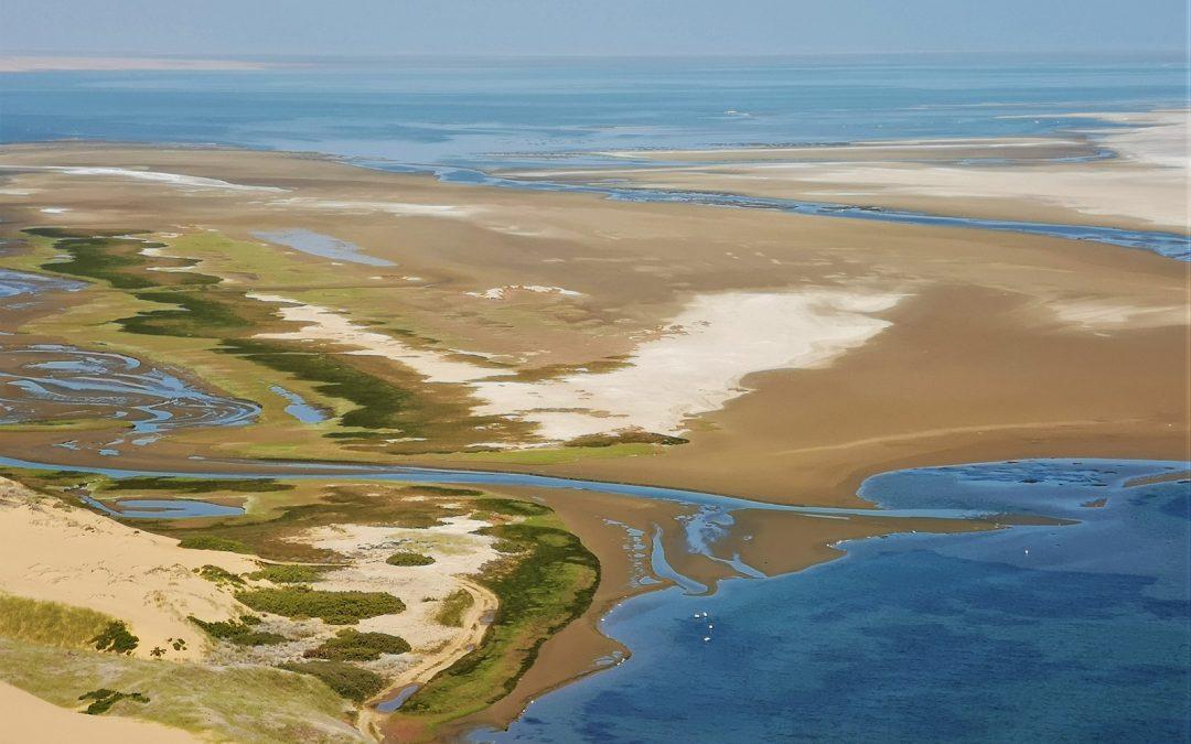Dix faits étonnants sur Sandwich Harbour en Namibie